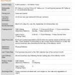 BinaryInterbank.com offre quattro tipi di conti